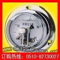 抗振磁敏电接点压力表系列