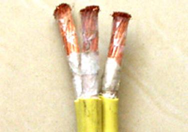 大连石油化工电缆