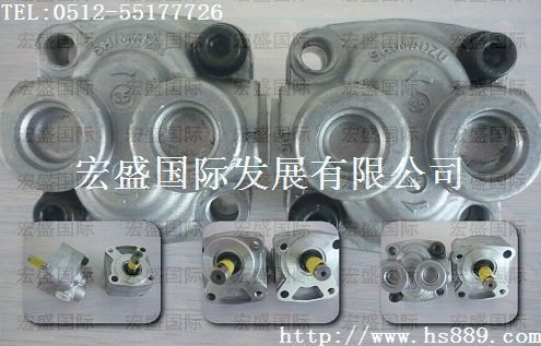 YP10齿轮泵