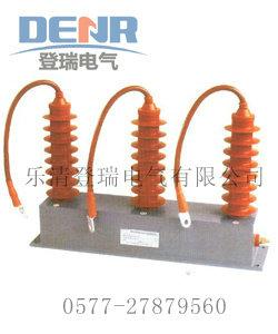 TBP-B(C)-42F/310户内型过电压保护器