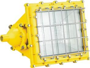 BTC8160防爆泛光燈