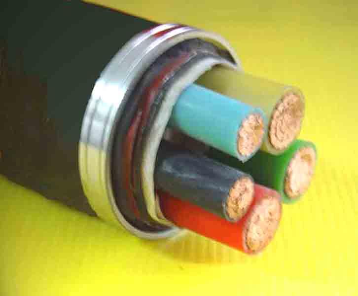 双层胶皮电缆VV22 3*95+2*50