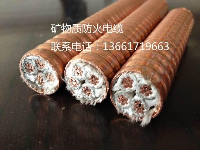 矿物质电缆BTTZ、BTTE