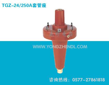 TGZ-24-250套管座