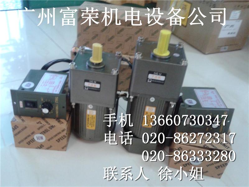 _掣s小型电机/东文小型电机/东纬庭/东力/小型电机