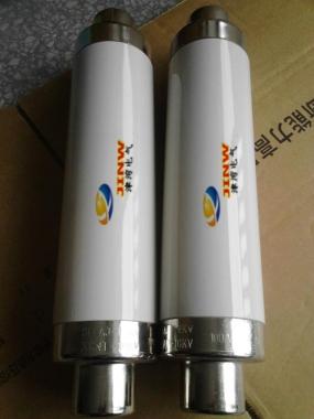 XRNT1-10/100A 【XRNT1-10高压限流熔断器推广】