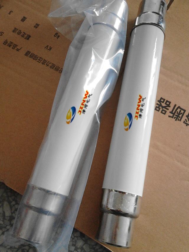 XRNT1-12/25A【SDLAJ-12/25A】变压器保护用高压限流熔断器