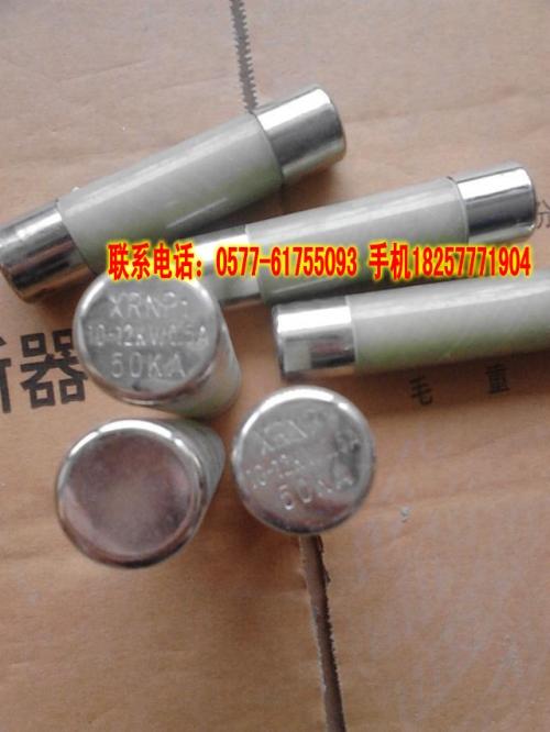 XRNP1-3.6/0.5A电压互感器保护高压限流熔断器
