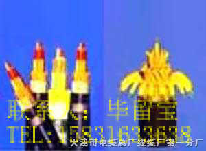 矿用阻燃通信电缆MHYV MHYAV