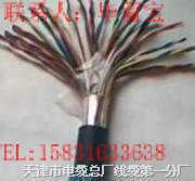 MHYV-2*2*7/0.37(0.75)矿用通信电缆