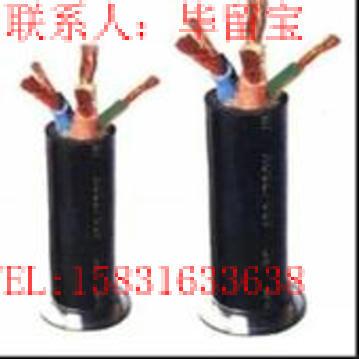 铠装计算机电缆DJYVP22;DJYPV22;DJYPVP22