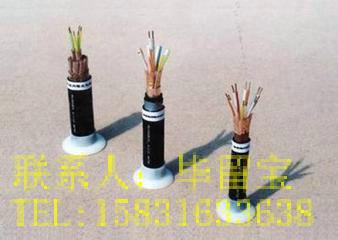 PTYA22 PTY23 PTY22 铁路信号电缆