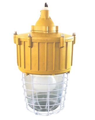 海洋王ccd92-j250防爆照明灯