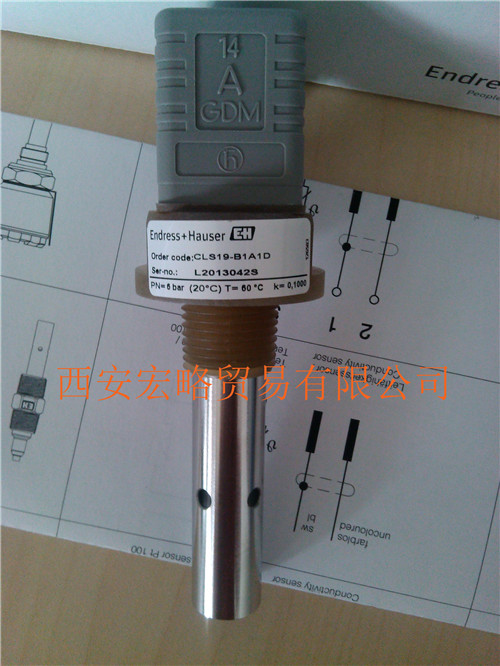 E+HCLS19-B1A1D电导率电极
