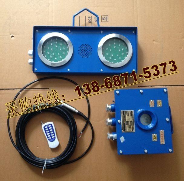 水仓高低水位报警装置-ZSB127矿用水位报警器